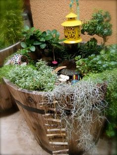 From Choochmagooz.blogspot.  I just love that kids are starting early with gardening--these fairy gardens are fun for all ages.