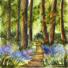 Bluebells  Flowers  Path Trees Forest  Spring SFA  by ArtDownUnder