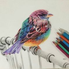 """'Touched by a Rainbow' - Colored pencil (8"""" x 10"""") drawing by artist @karenhullart #artinspires #artislife #artordie #theartisthemotive ."""