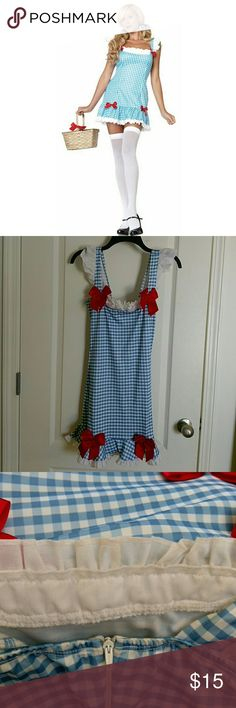 Darling dorthy. Dress with zipper in back, slight body makeup (pic3) , I added a snap closer so it won't unzip (see last pic). Added red glittery bow headband! Other
