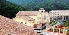Tejas Borja Centenaria Gorund TB-12 Roof tiles