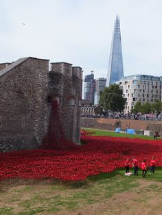 Tower of London Poppies and the Shard - August 2014 The Shard, Tower Of London, August 2014, 30th, Poppies, Sidewalk, Louvre, Explore, Building