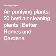 These air cleaning plants will help you remove toxins and improve air quality. Here is a round-up of the best air purifying indoor plants that will add a touch of colour and clean air to your home. Air Cleaning Plants, Air Purifier, Better Homes And Gardens, Indoor Plants, I Am Awesome, Home And Garden, Good Things, Garden Ideas, Inside Plants