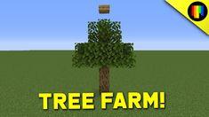Oak Logs, Minecraft Survival, Oak Tree, Herbs, Herb, Medicinal Plants