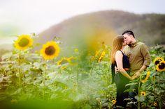 love story finca el girasol y ensenada guanica (1)