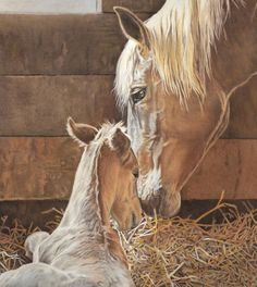 The New Arrival Is Here - Horse painting by Helen Bailey