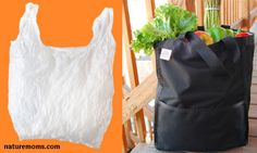 Should We Get Behind Plastic Bag Bans?  http://naturemoms.com/blog/2012/12/10/should-we-get-behind-plastic-bag-bans/