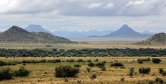 Flat-topped hills and vast open spaces define the Karoo landscape.