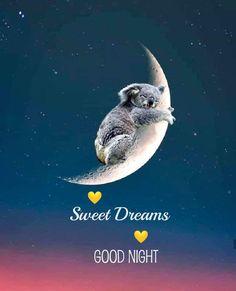 Cute Good Night, Good Night Messages, Good Night Image, Good Morning Good Night, Good Night Quotes, Good Morning Prayer, Morning Prayers, Good Knight, Good Night Blessings