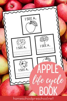 These apple life cycle activities are perfect for back to school! Preschool and kindergarten kiddos will love learning about apple this fall. Get yours today! #applelifecycle #lifecycleofanapple #lifecycleactivities #homeschoolprek Fall Preschool, Preschool Books, Preschool Lessons, Sequencing Cards, Sequencing Activities, Vocabulary Practice, Vocabulary Words, Apple Life Cycle, Teaching Sight Words