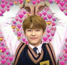 na jaemin [✓] - { 𝟙 } - Wattpad New Memes, Love Memes, Memes Humor, Meme Faces, Funny Faces, Fan Fiction, Taeyong, K Pop, Wattpad