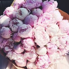 #Peonies #Bouquets