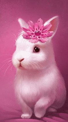 DIY Diamond Painting Cartoon White Bunny Rabbit with Pink Flower - craft kit Easter Pictures, Animal Pictures, Beautiful Gif, Animals Beautiful, Cute Baby Animals, Funny Animals, Ostern Wallpaper, Bunny Images, Emoji Love