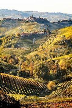 The Beautiful fields on Tuscany, Italy