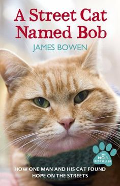 This hero is named Bob and it is a cat. Bob helped the drug-addicted street musician James Bowen back to live. Some years later James wrote down the story... | Photo from book title with Pin-It-Button on http://www.amazon.de/dp/1444737112/ref=cm_sw_r_pi_dp_3xwwsb03T9RQK