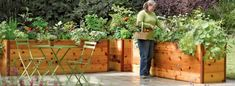 DIY garden beds: 43 interesting ideas for country design Cedar Raised Garden Beds, Raised Bed Garden Design, Diy Garden Bed, Flower Garden Design, Easy Garden, Garden Ideas, Raised Beds, Fall Vegetables To Plant, Growing Vegetables