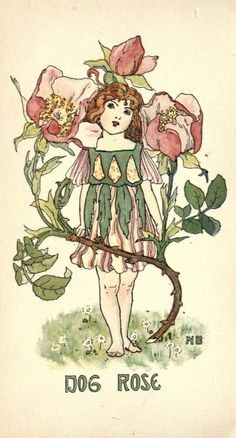 bumble button: Nellie Benson Book Plates of Darling Flower Children from 1901..The illustrator is Nellie Benson.Today's selection features the plates that have pink and rose colors