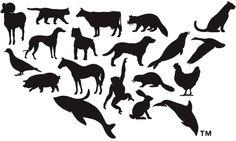 Humane Society of the United States Logo
