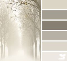 The photo and these tones inspire me. foggy tones | design seeds | Bloglovin'