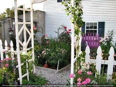 Creative Country Mom's Garden: It's All About The Roses
