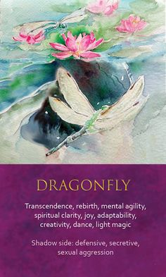 Spirit Animal Awareness Oracle Cards – Dragonfly Famous Quotes For Success Spirit Animal Totem, Animal Spirit Guides, Butterfly Spirit Animal, Animal Meanings, Animal Symbolism, Spiritual Animal, Animal Medicine, Power Animal, Angel Cards