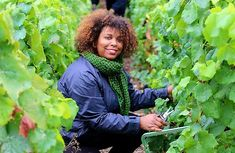 Meet The Woman Bringing A Caribbean Twist To French #Champagne A region in the north of France roughly twice the size of San Francisco is the birthplace of a revered sparkling wine synonymous with wealth, luxury and exclusivity. Champagne — the name of the region and the drink — sells around 300 million bottles a year, with the industry being worth over $5 billion. And no bottle of sparkling wine produced outside of this unique region is allowed to be labeled or called Champagne. But one… Learn Drive, Champagne Brands, Champagne Region, Food Retail, Moet Chandon, Visit France, African Diaspora, Bright Future, Sparkling Wine