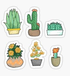 Plant bois pt2 Sticker