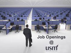 http://www.usmsystems.com/careers.php?page=job-detail&id=176  Job Title Sr. US IT Recruiter Job Code USM _ Recruitments Job Description Looking for Sr. US IT Recruiter