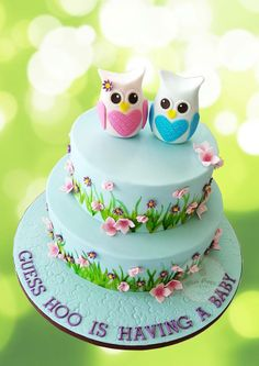 Cool idea but weirded out b/c baby showers scare me ~Owl baby shower cake by Miss Piggy's Cakes Ladybug Cakes, Owl Cakes, Cupcake Cakes, Fruit Cakes, Piggy Cake, Owl Cake Birthday, Shower Bebe, Cake Gallery, Cute Cakes