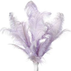 Ostrich Feather Decor