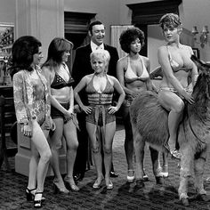 British Comedy, Good Movies, Movies And Tv Shows, Carry On, Movie Tv, Barbara Windsor, Good Things, Statue, Girls
