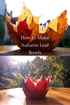 Autumn Leaf Bowls - - A really simple tutorial showing you how to make a leaf bowl with all those lovely autumn leaves. Gather them, press them and then make leaf bowls! Leaf Projects, Fall Art Projects, Autumn Leaves Craft, Autumn Art, Autumn Theme, Crafts For Seniors, Fall Crafts For Kids, Diy Autumn Crafts, Fall Leaf Template