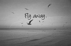 black and white, cute, quotes, fly, quote, run away, nicki minaj, rihanna