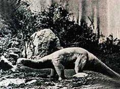 Plastic Dinosaurs, Prehistoric World, Prehistoric Animals, Stop Motion, Mammals, Sci Fi, Horror, Cinema, Dinosaurs