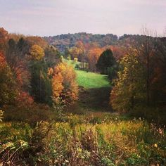Pennsylvania Fall... missing the hills of my childhood home
