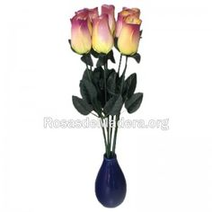 rosa-grande-amarilla-morada Grande, Plants, Wooden Flowers, Yellow Girl Nurseries, Roses, Plant, Planets