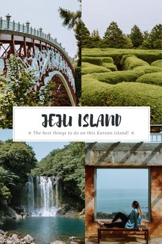 Everything you need to know for your trip to Jeju Island in South Korea! All of the best things to do, where to stay, where to eat, and more! #southkorea #asiatravel #jejuisland #bucketlist #southkoreatravel South Korea Travel, Asia Travel, Japan Travel, Jeju City, Cities In Korea, Jeju Island, Mysterious Places, Beach Town, Amazing Destinations