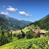 Ayder Plateau, Rize