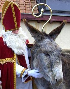 Saint Nicolas et âne Les Fables, Saint Nicolas, Donkeys, Goats, Saints, Animals, Feather, Characters, Winter