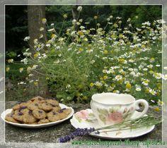 Levendulás keksz és hozzá illő tea Tihanyban