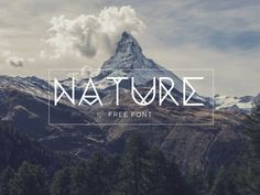 Best Free Fonts You Should Try in 2018 Lettering, Typography Fonts, Typography Design, Brush Script, Sans Serif, Nature Font, Modern Font, Free Typeface, Natural Disasters