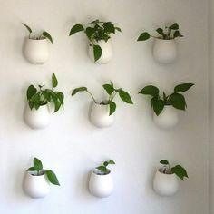 bacs à plantes accrochés sur un mur
