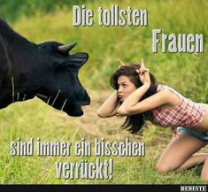 An alle Landwirte da draußen: Die besten Landwirt Shirts gibt's nur bei uns von… To all farmers out there: The best farmer shirts are only … Stupid People Videos, People Doing Stupid Things, Facebook Humor, Funny Animal Videos, Funny Animals, Winning Lotto, Sweet Memes, Man Humor, Funny Dogs