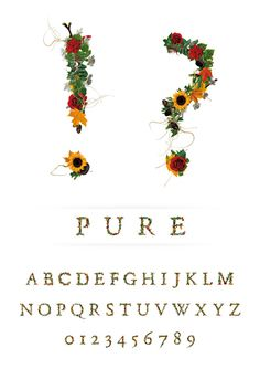 Floral Typeface, For Typography Lovers With Green Thumbs - DesignTAXI.com
