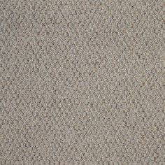 TrafficMASTER Big Picture - Color White Pewter 12 ft. Carpet
