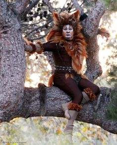 Modern Family - Cam in a tree, dressed as a cat. Modern Family Funny, Modern Family Tv Show, Family Love, Haha Funny, Hilarious, You Make Me Laugh, Belly Laughs, Best Shows Ever, Just For Laughs