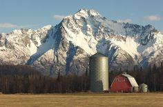 Palmer, AK : At 6,398 feet Pioneer Peak is the highest mountain surrounding Palmer Alaska.