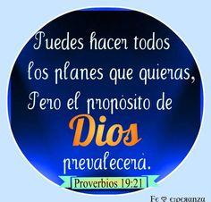Muchos pensamientos hay en el corazón del hombre;  Mas el consejo de Jehová permanecerá.   Proverbios 19:21