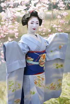 Geisha-Kai:  Is this a living angel or a maiko san? Kimika of Miyagawacho Portraited by WATASAN on Flickr She's now (and still!)...