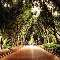 TO SEE: Hyde Park - Like my hometown Central Park, the beauty of Hyde Park is just unparalleled. Plopped right in the middle of a bustling city, it's the perfect place to get some fresh air and enjoy the scenery.